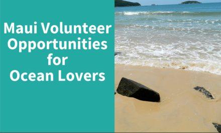 Maui Volunteer Opportunities for Ocean Lovers