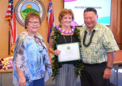 HandsOn Maui 2015 Volunteer Heroes