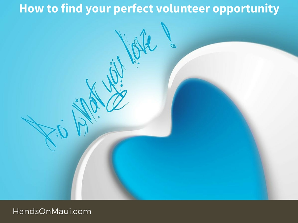 How to find your perfect Volunteer Opportunity