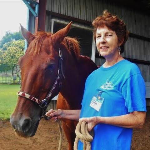 Tannis Grimes, Volunteer Hero