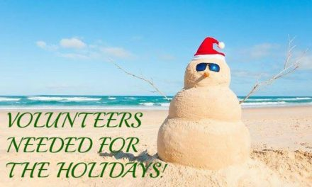 Volunteer for the Holidays