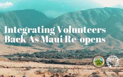 Bring Volunteers Back in to Your Nonprofit as Maui Re-opens