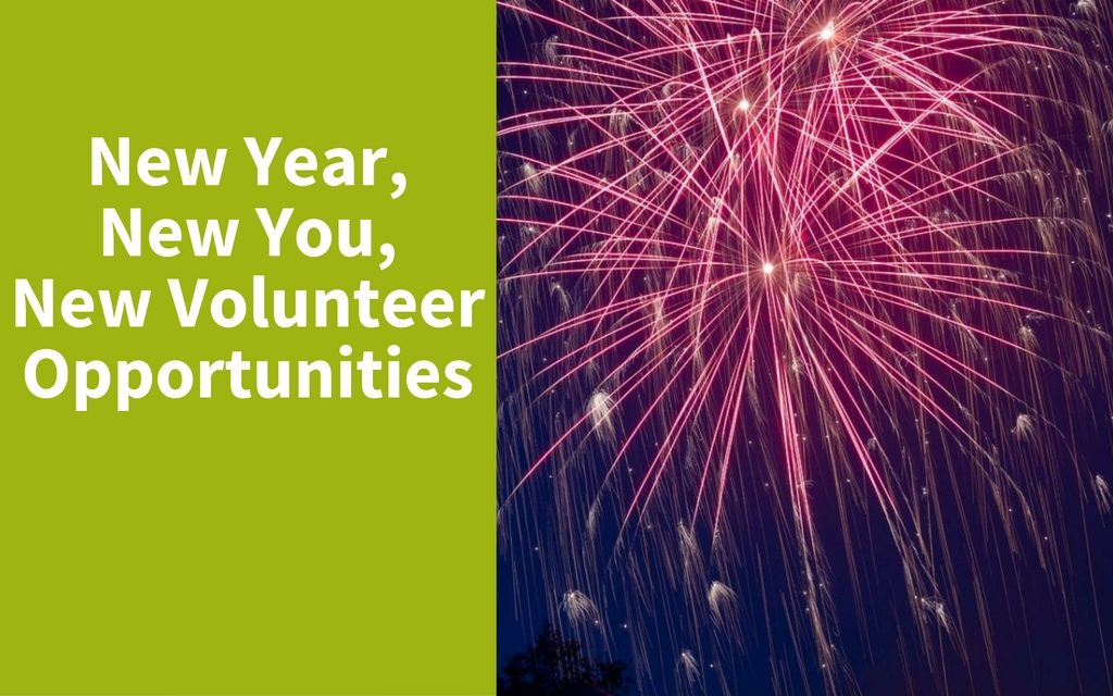 New Year, New You, New Volunteer Opportunities