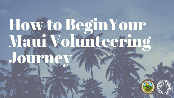 How To Begin Your Maui Volunteering Journey
