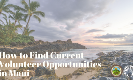 How to Find Current Volunteer Opportunities in Maui