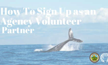 How To Sign Up as an Agency Volunteer Partner