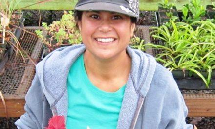 Volunteer Spotlight: Loriann Feiteira