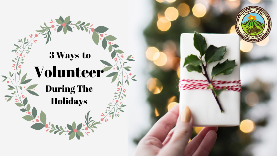 3 Ways You and Your Company Can Volunteer During the Holidays