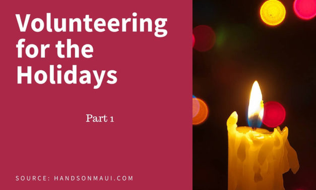 Volunteering for the Holidays – Part 1