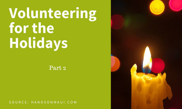 Volunteering for the Holidays – Part 2